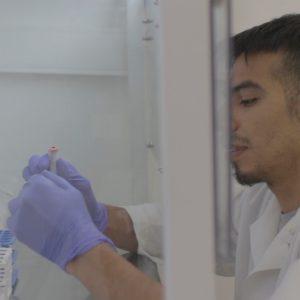 Estudio de microorganismos
