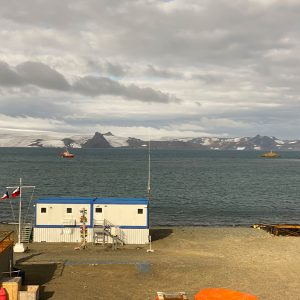 Islas Shetland del Sur